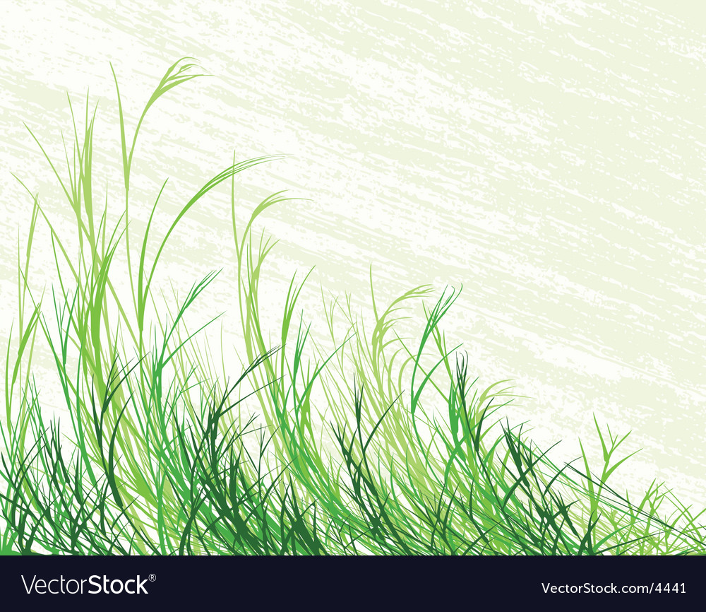 Blowing grass vector image