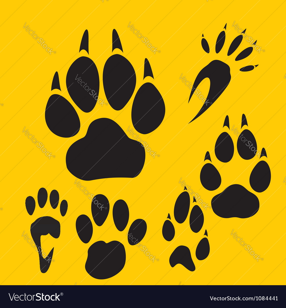 Footprints set - vinyl-ready vector image