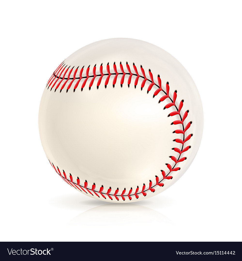 Baseball leather ball isolated on white softball vector image