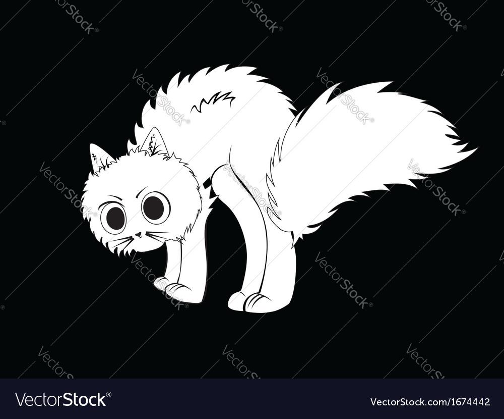 Cartoon white kitten vector image
