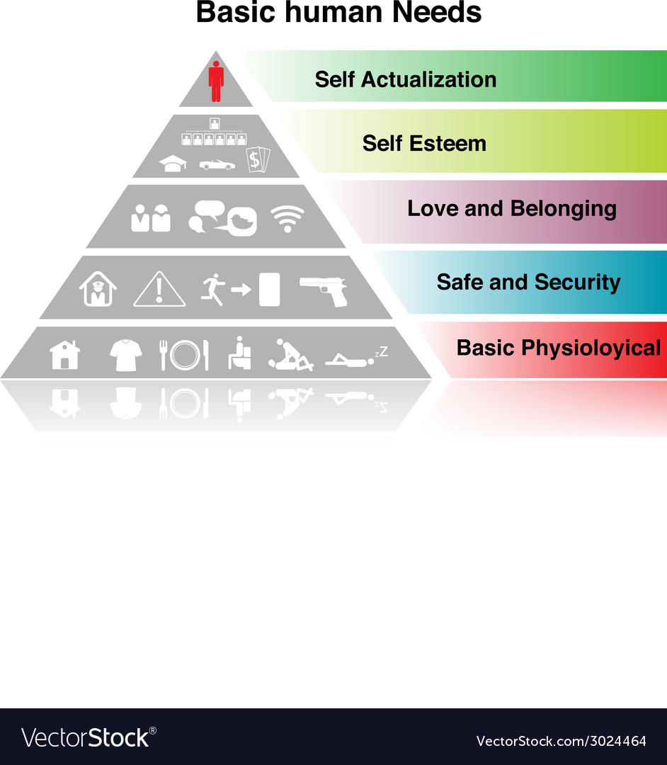 basic human needs Basic human needs introduction: basic needs every person has certain basic needs that must be meet so that he can survive a need is a requirement for.
