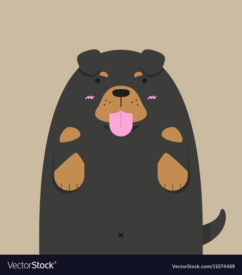 Cute big fat Rottweiler dog vector image