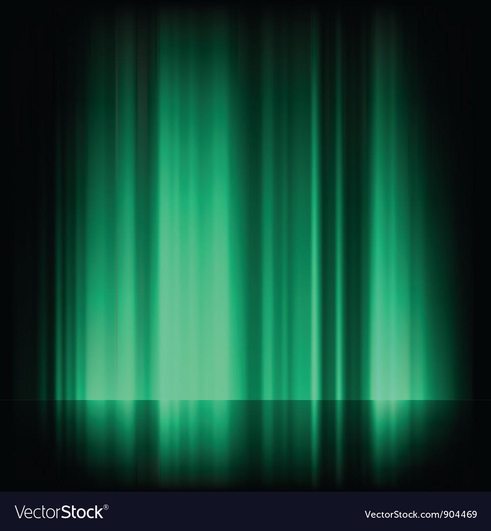 Northern lights aurora vector image