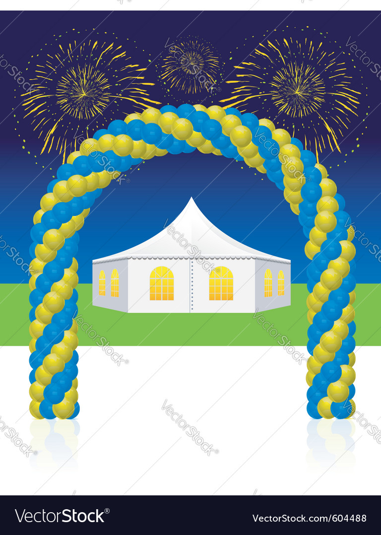Fireworks party vector image