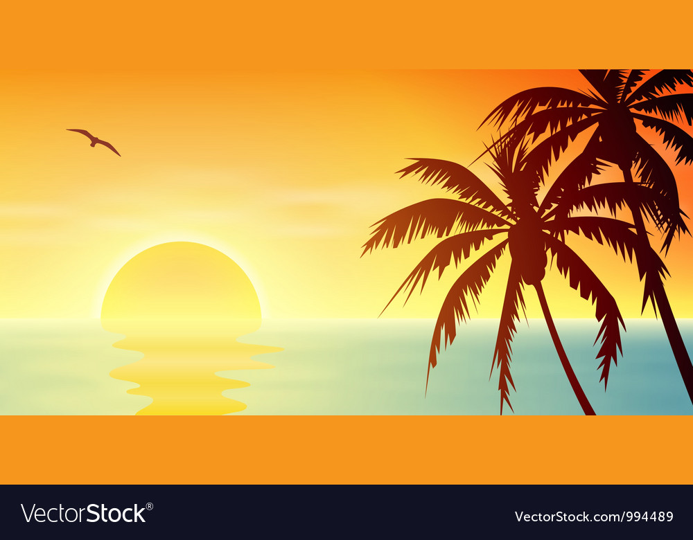 Tropical Sunset vector image