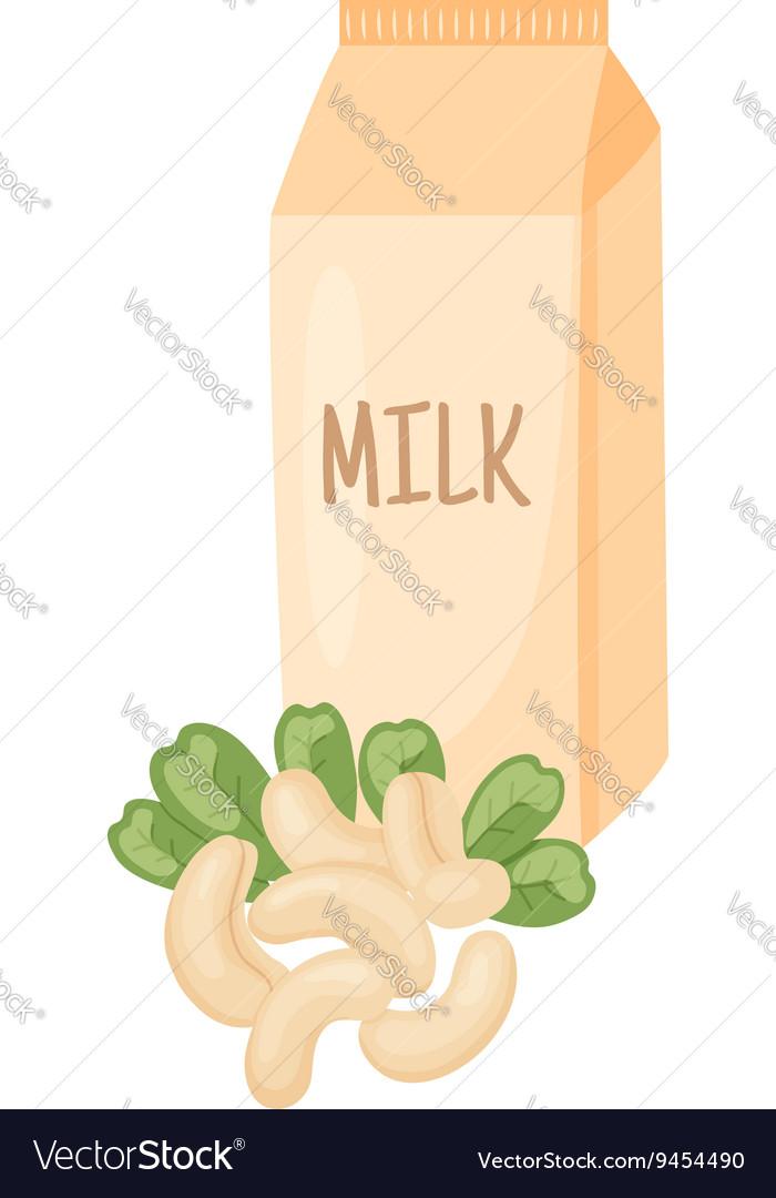 Cashew milk vector image