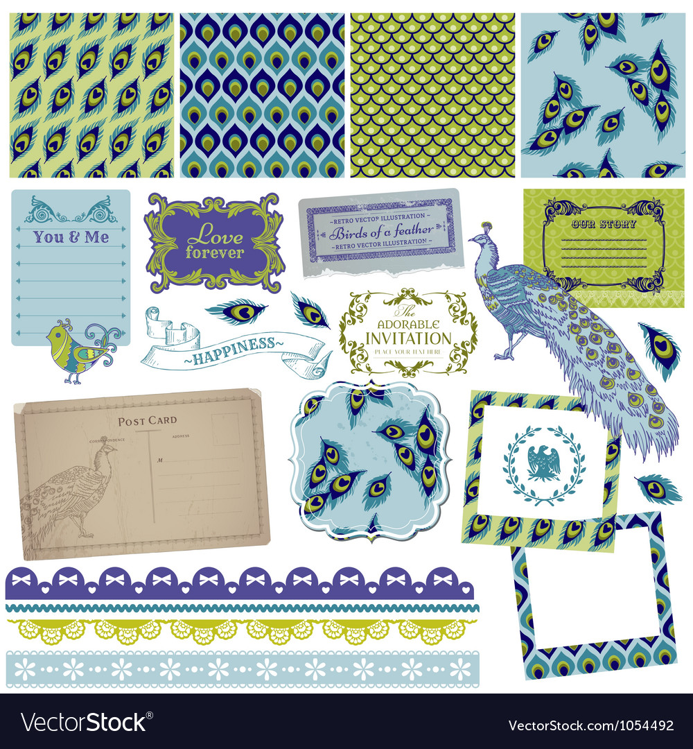 Design Elements - Vintage Peacock Feathers vector image