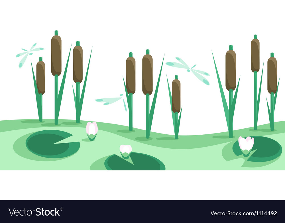 Lake reeds lilies in horizontal seamless border vector image