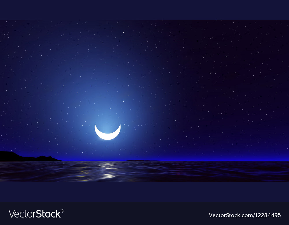 Night sky with ocean moon stars background vector image