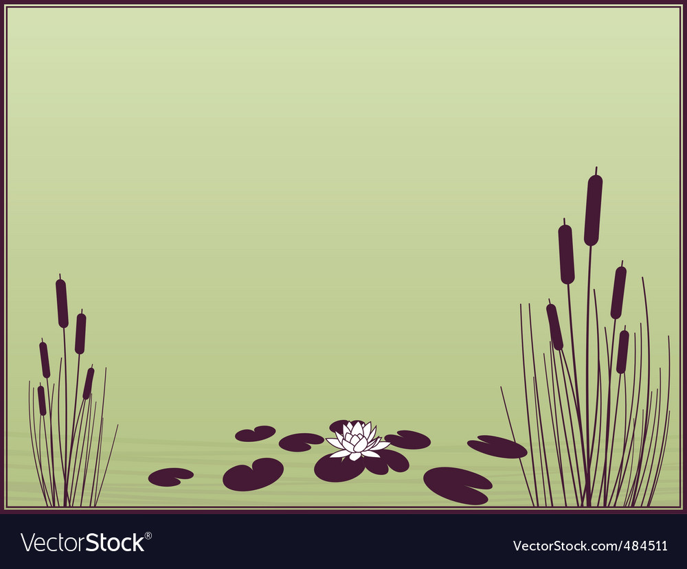 Lily and cattails background vector image