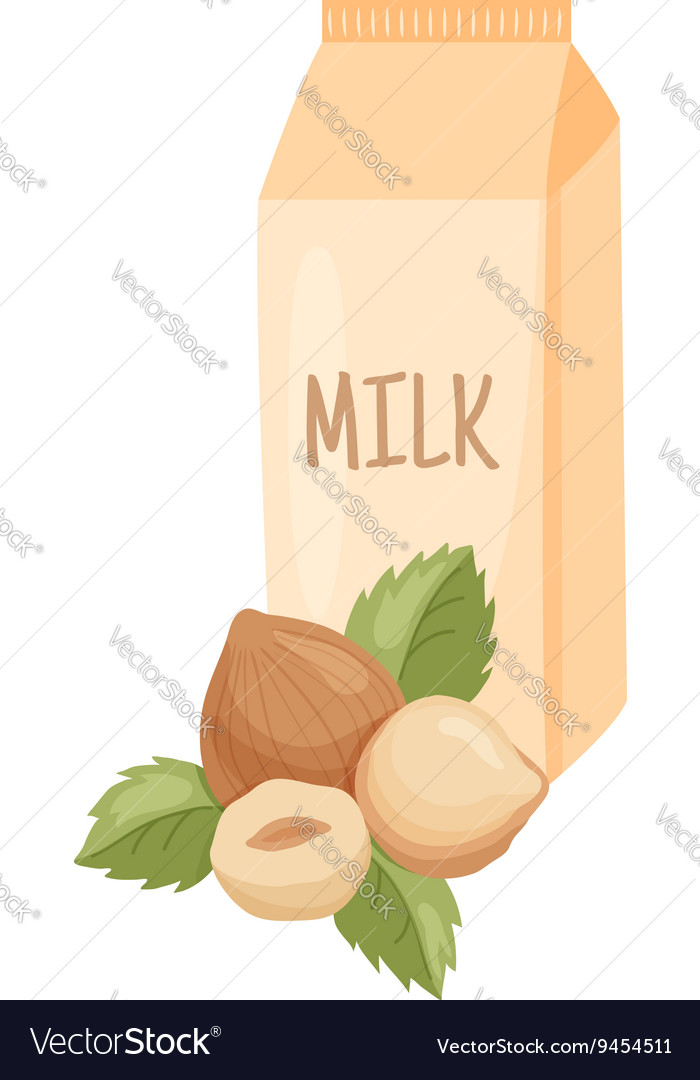 Hazelnut milk vector image