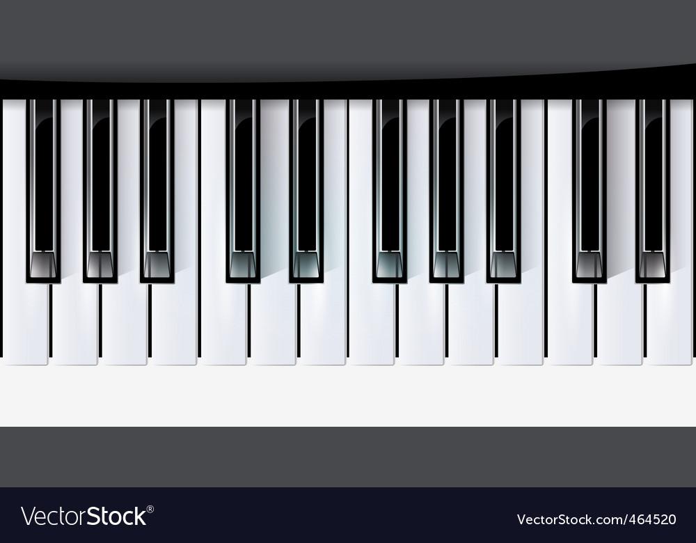 Vector keys piano music vector image