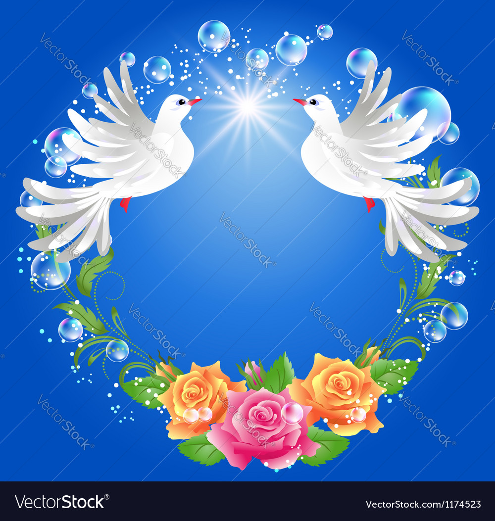 Two doves on blue background vector image