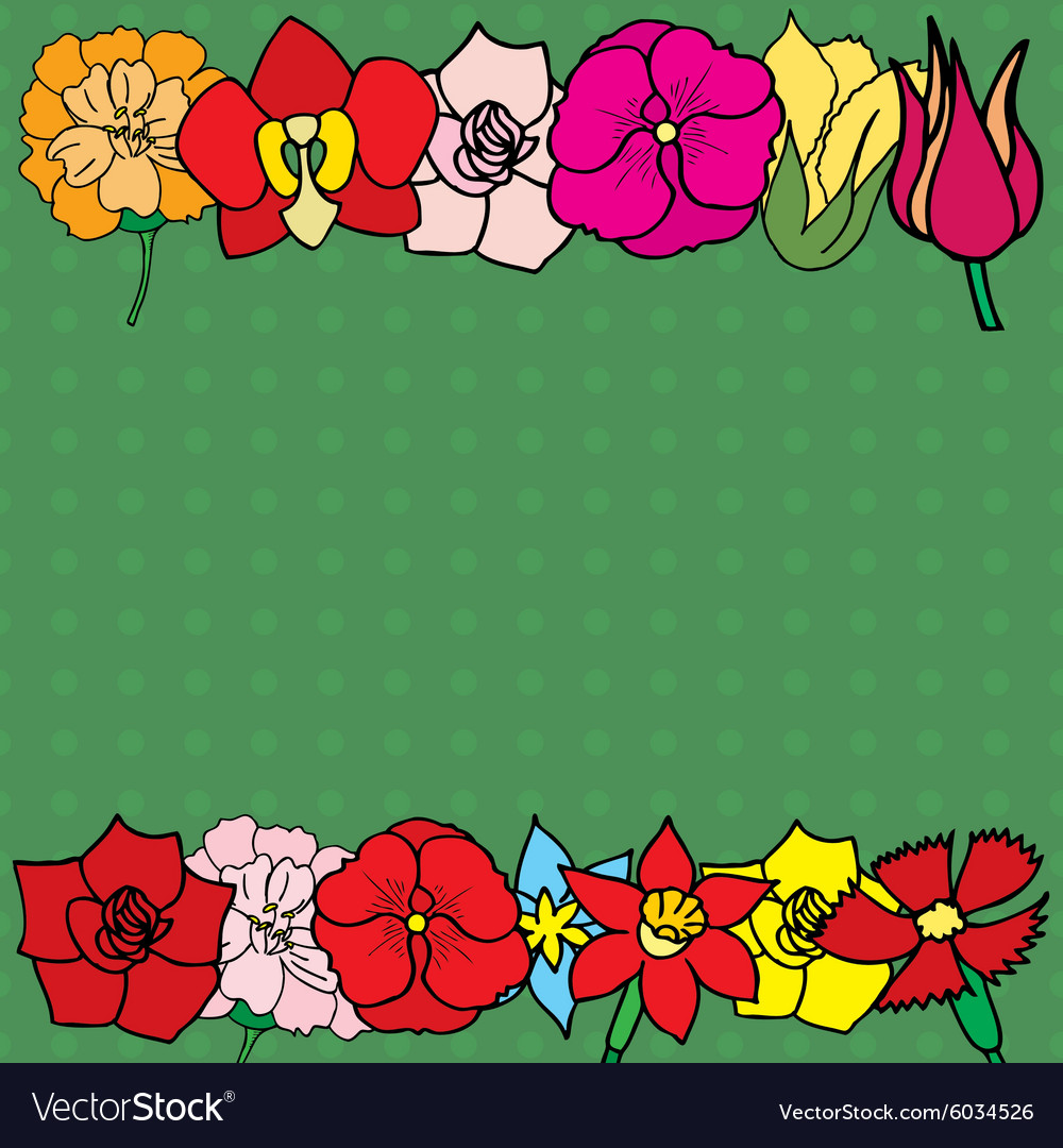 Many flowers vector image