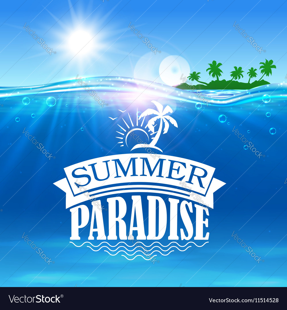 Summer paradise banner Ocean palms island vector image