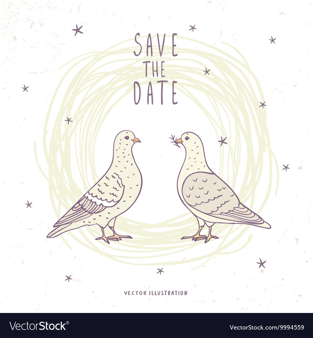 Two white doves vector image