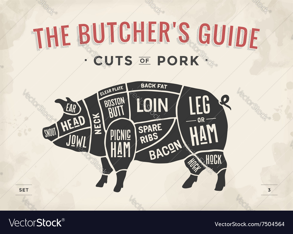 Cut of meat set Poster Butcher diagram scheme vector image