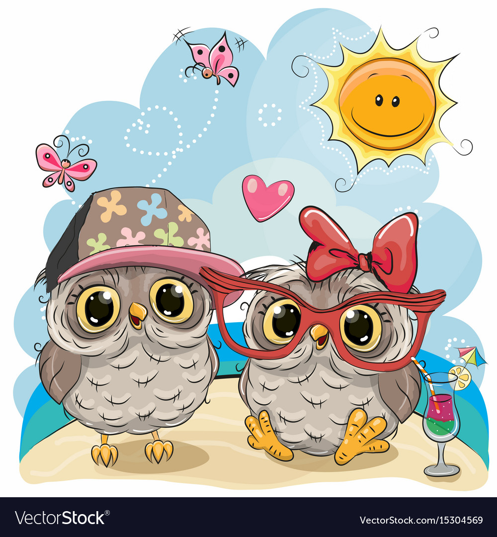 Two owls on the beach vector image