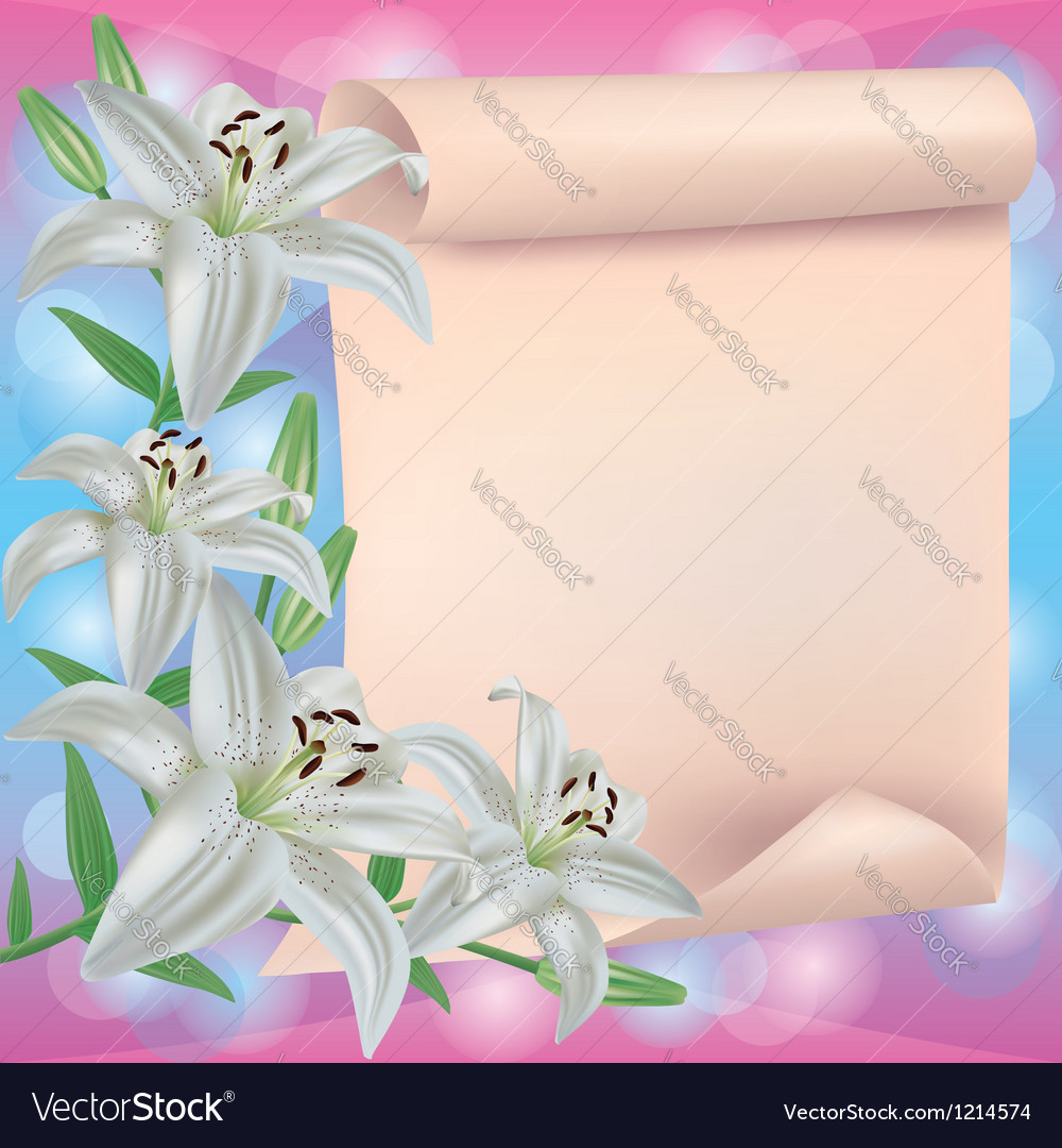 Greeting or invitation card with lily flower and vector image