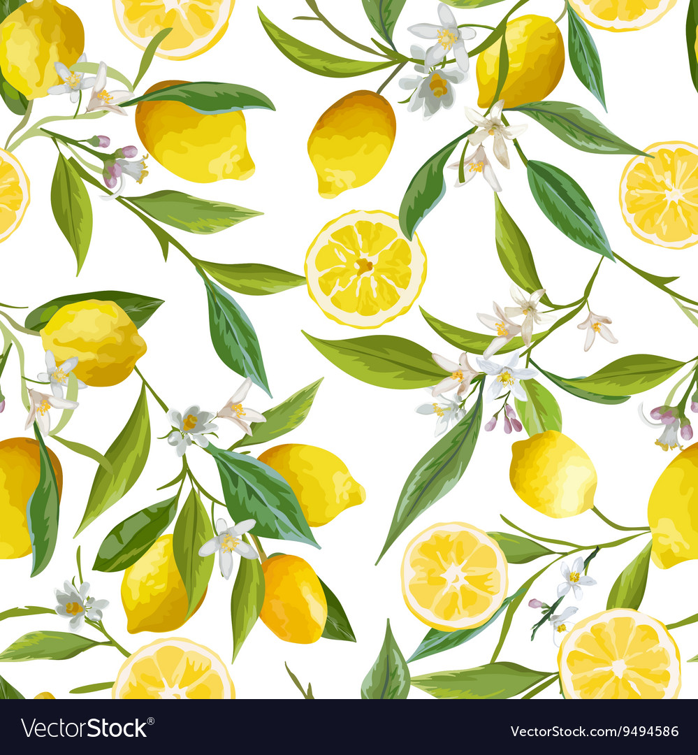 Seamless Pattern Lemon Fruits Background Floral vector image