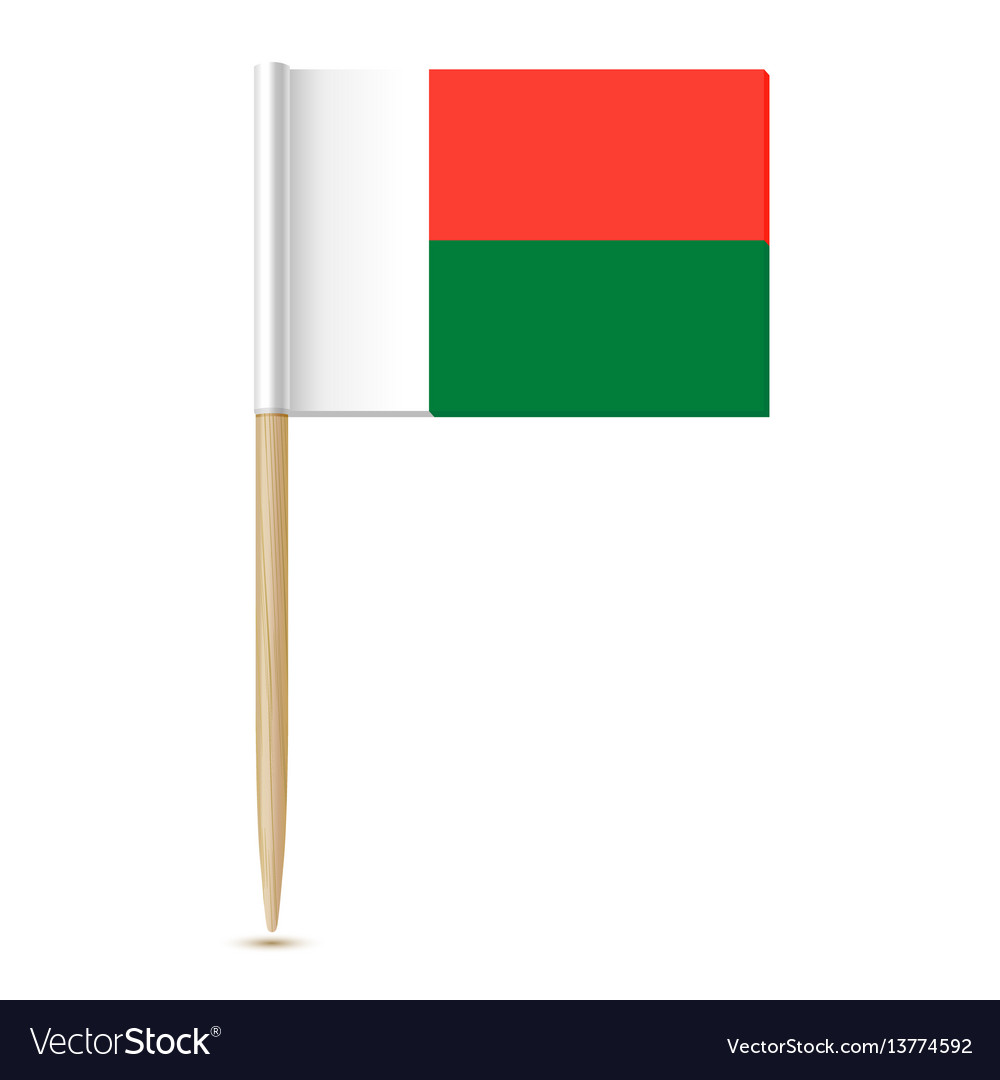 Flag of madagascar toothpick on white backgroun vector image