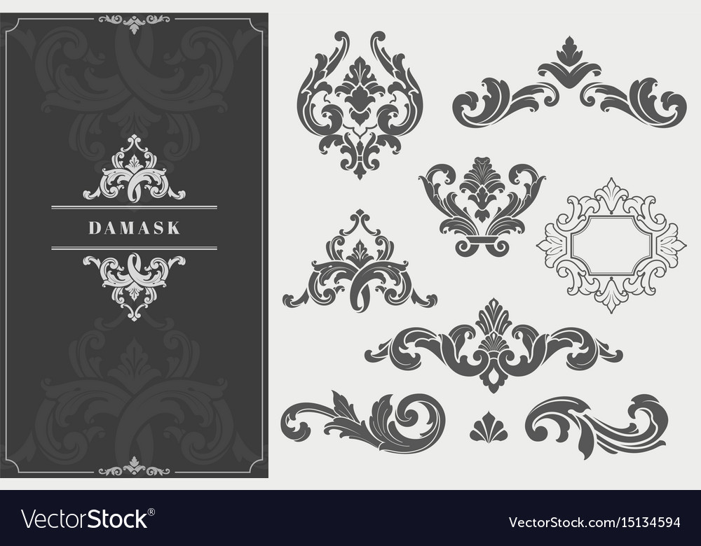 High quality damask design elements vector image
