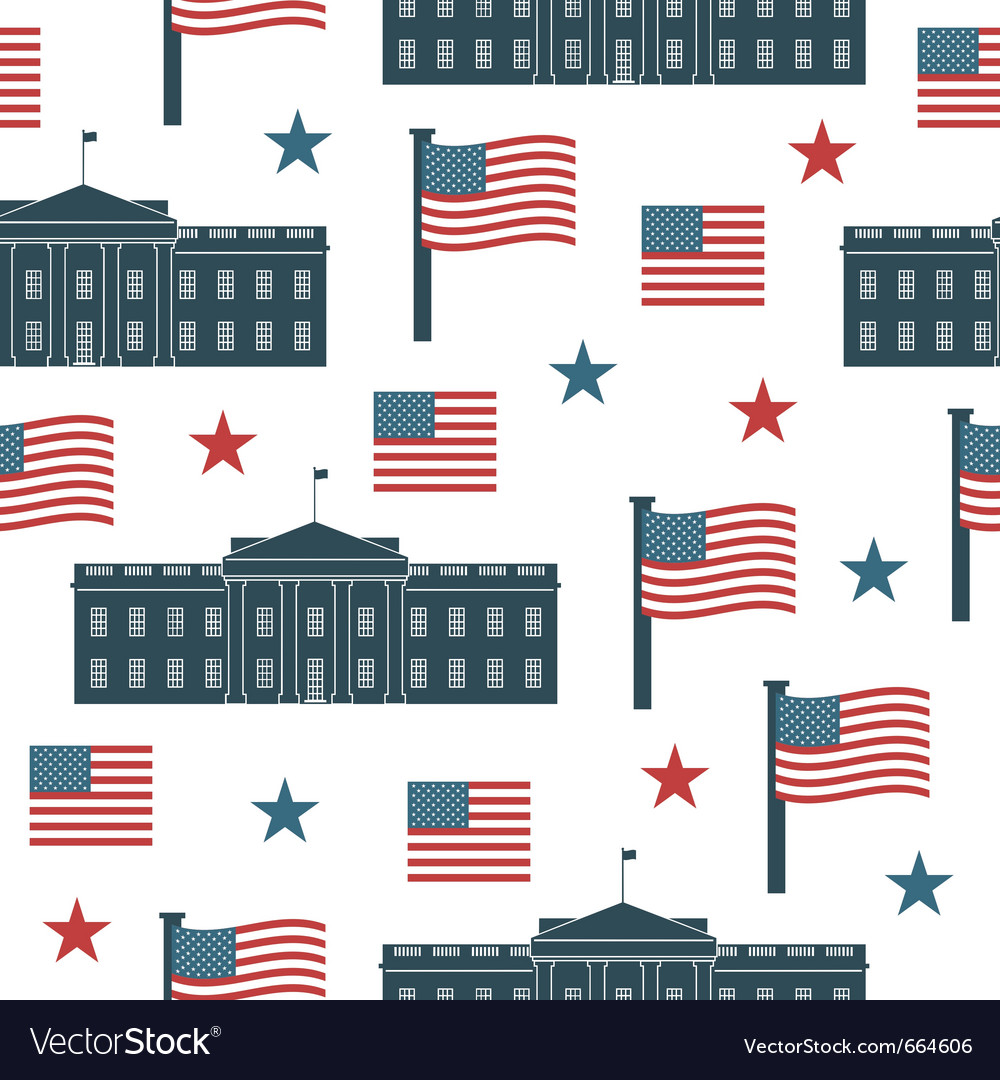 Usa pattern vector image