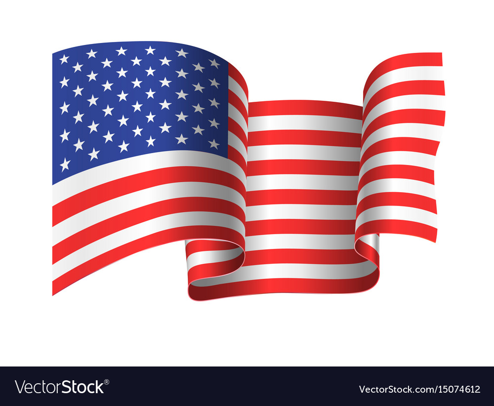 Developing in the wind the american flag vector image