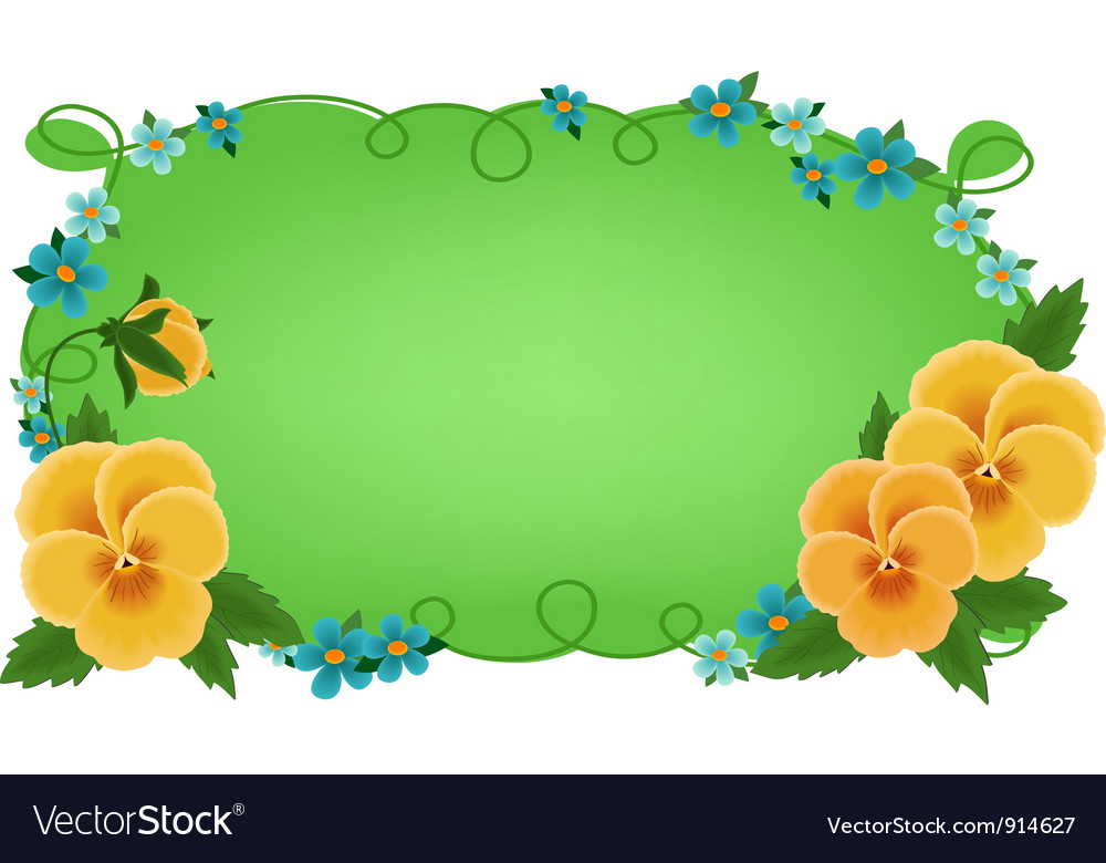Banner or greetings card with pansies vector image