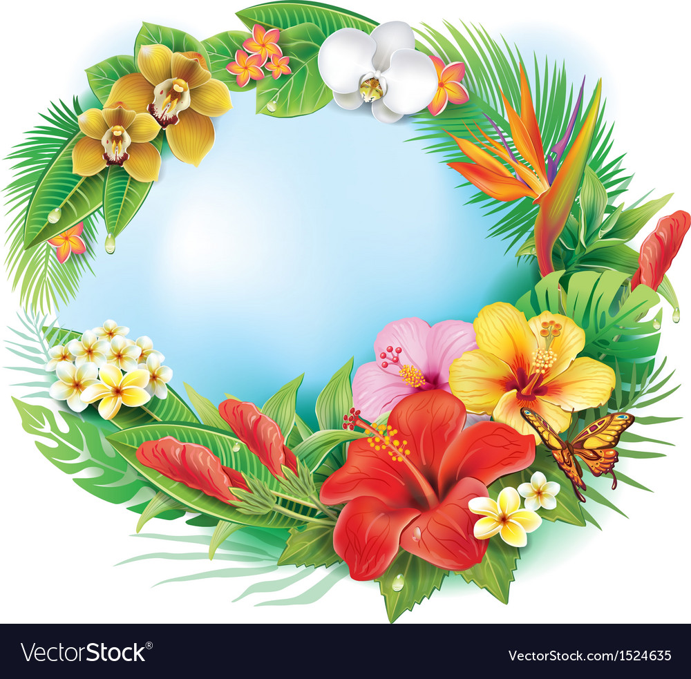 Round banner from tropical flowers and leaves vector image
