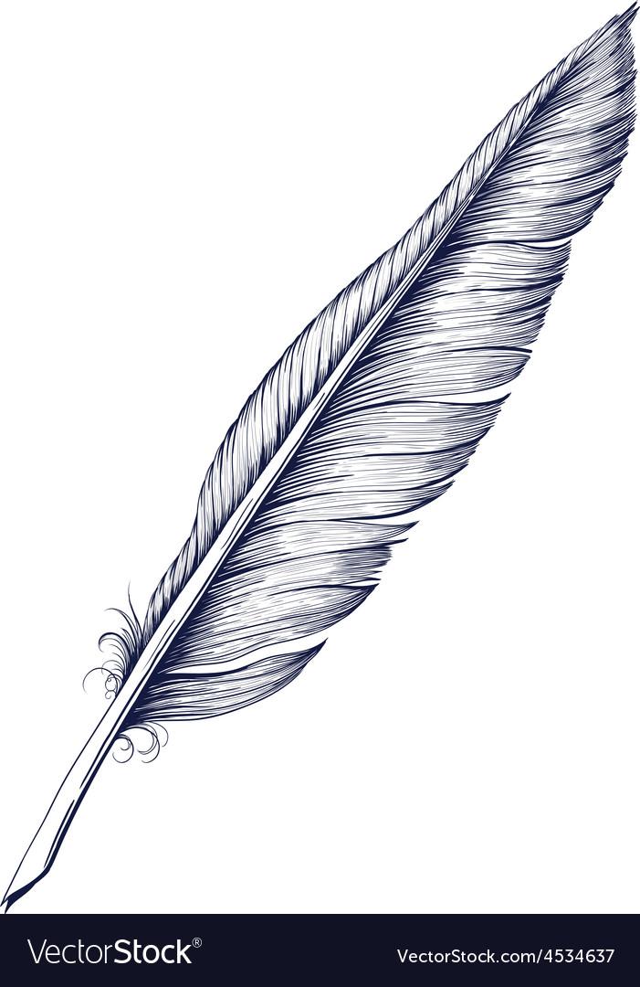 quill pen royalty free vector image - vectorstock