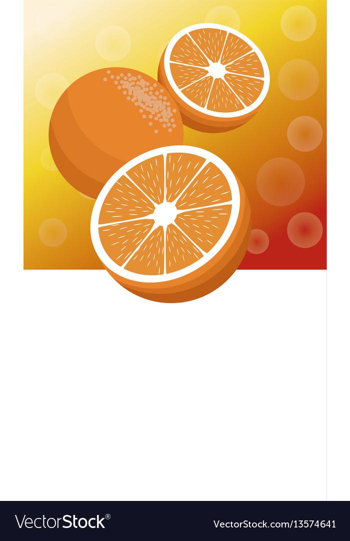 Brochure orange fruit template vector image