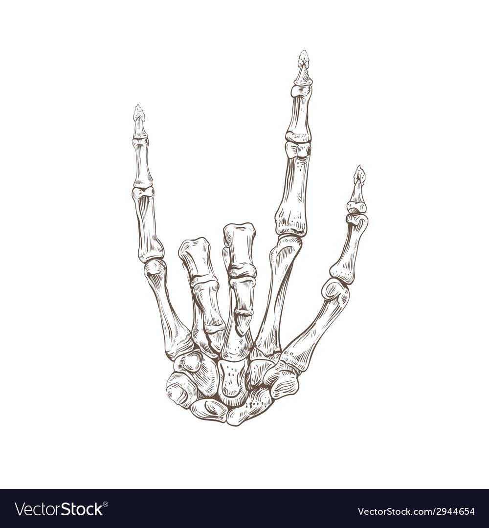 Skeleton hand heavy metal vector image