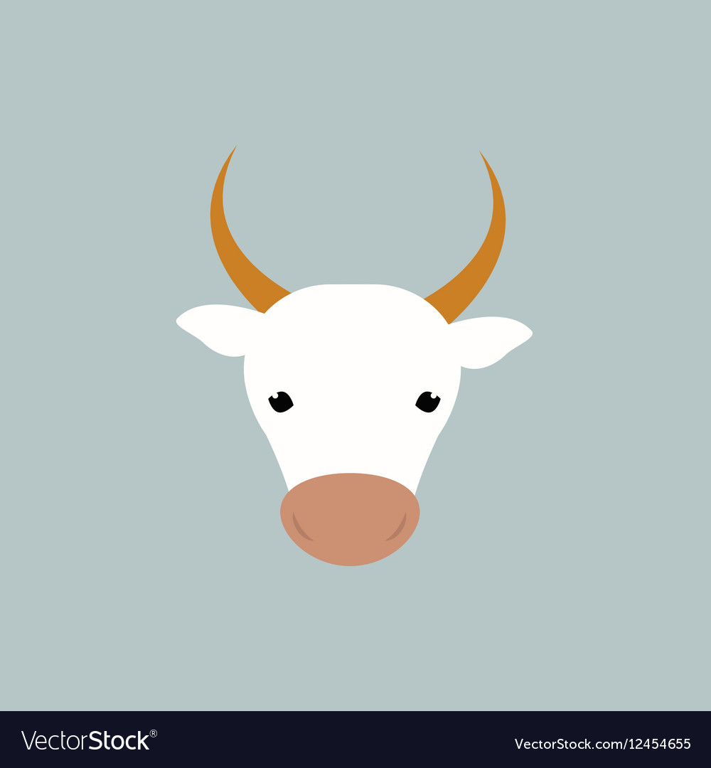 White cow head vector image
