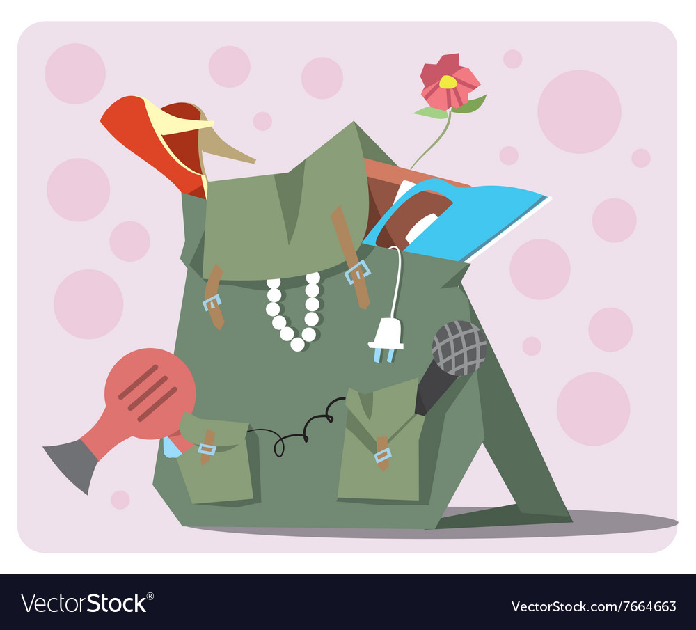 Backpack of the modern tourist vector image