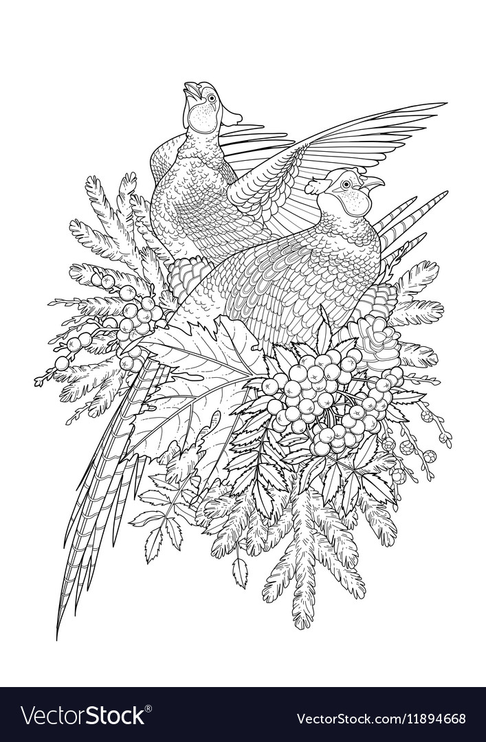 Graphic art with pheasants vector image