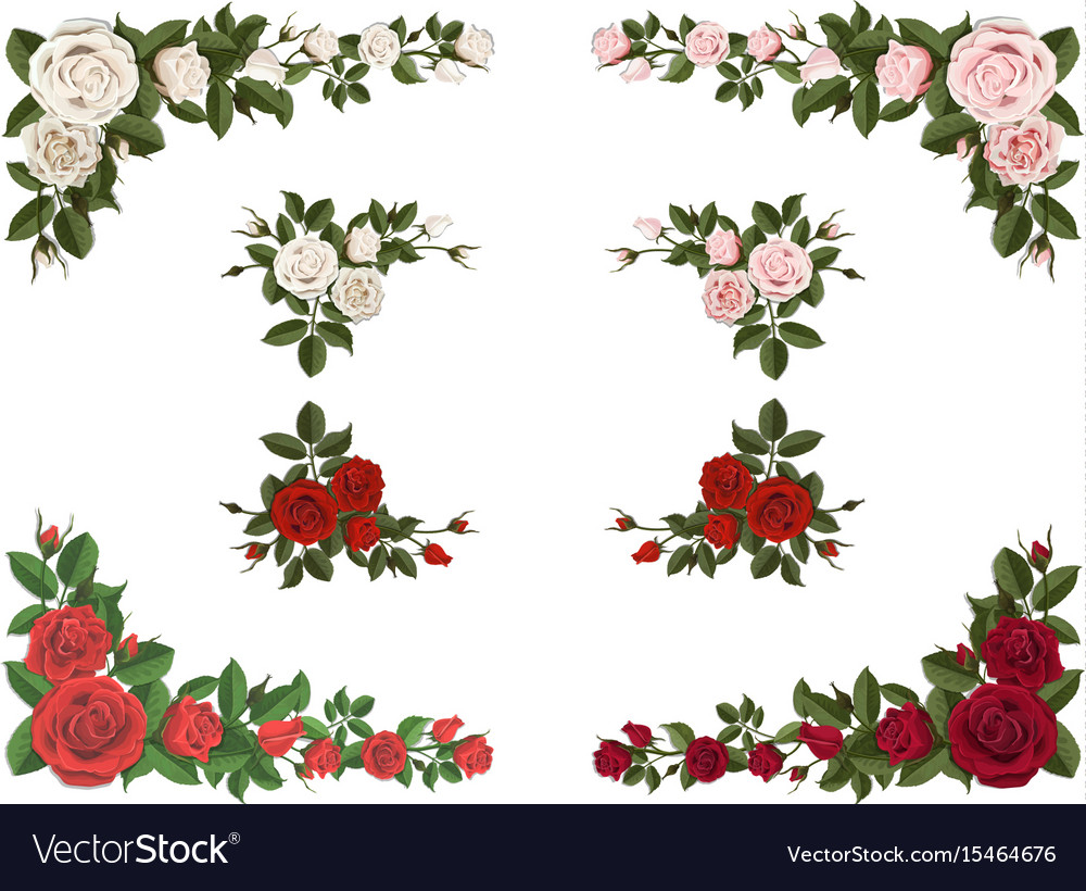 Set of corner bouquet roses different color vector image