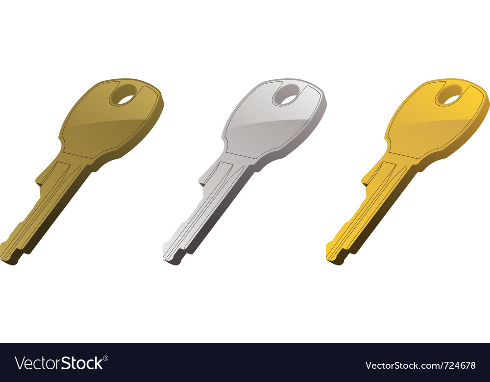Metal keys vector image
