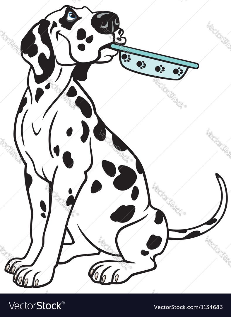 Cartoon dalmatian vector image