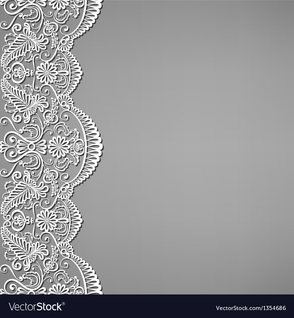 Lace and floral ornaments vector image