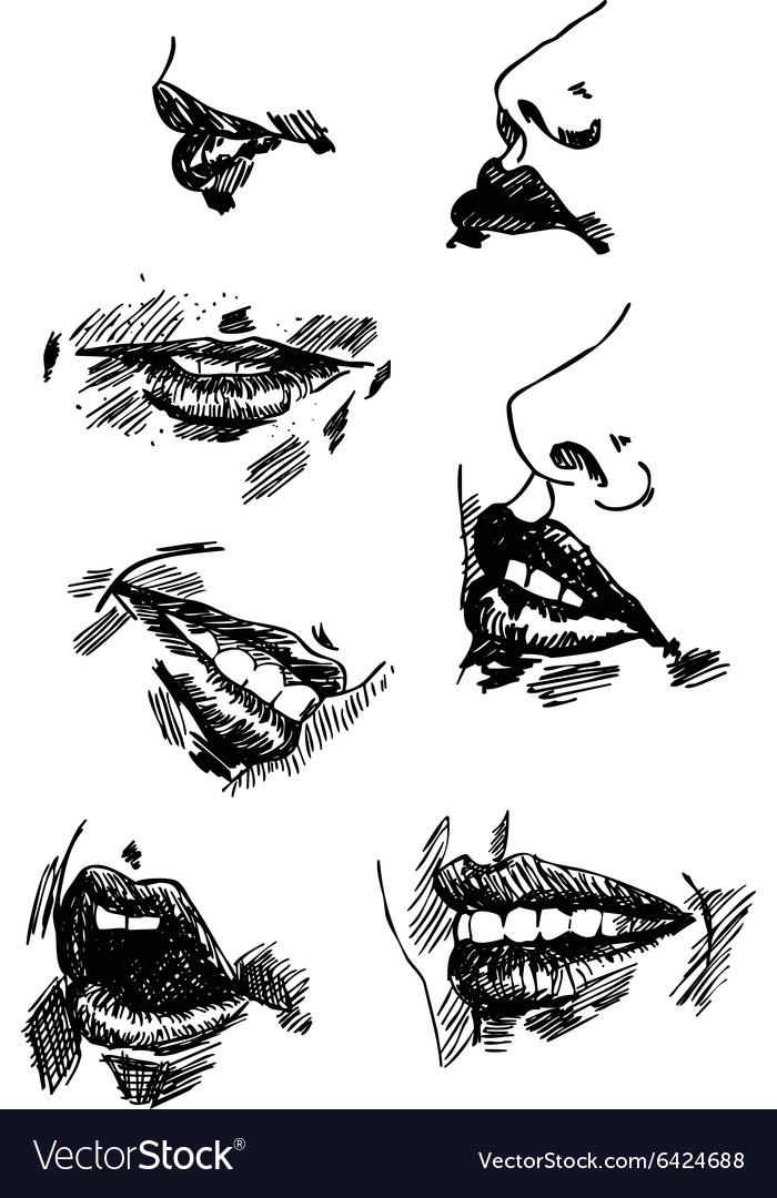Set pencil drawing lips Realistic sketch vector image