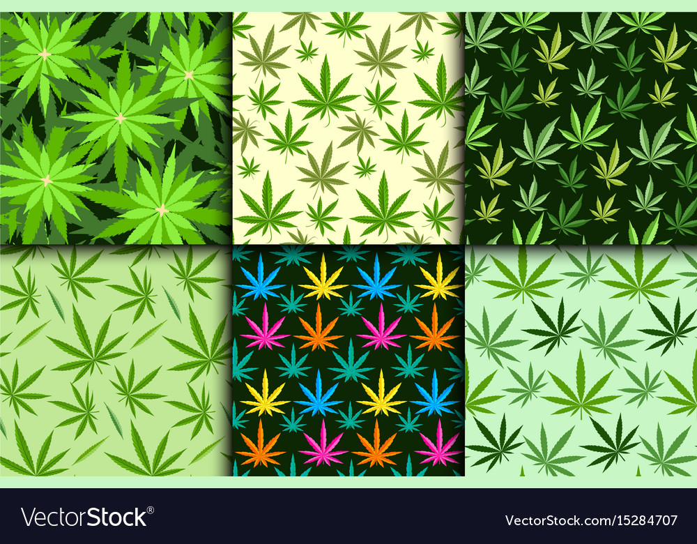 Green marijuana background vector image