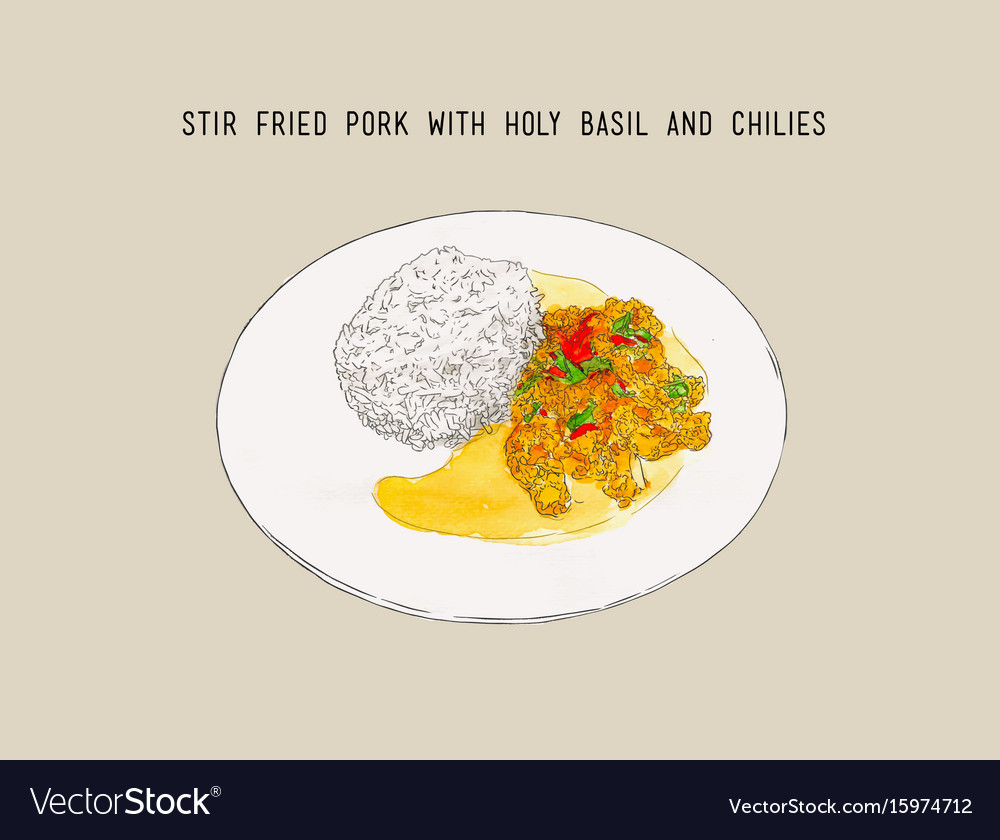 Stir-fried pork and holy basil thai food hand vector image