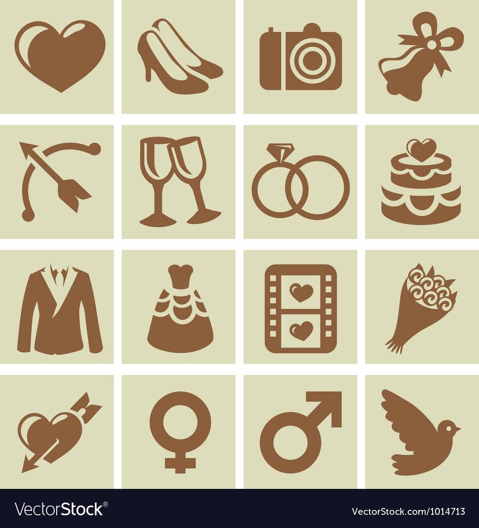 Design elements for wedding cards vector image