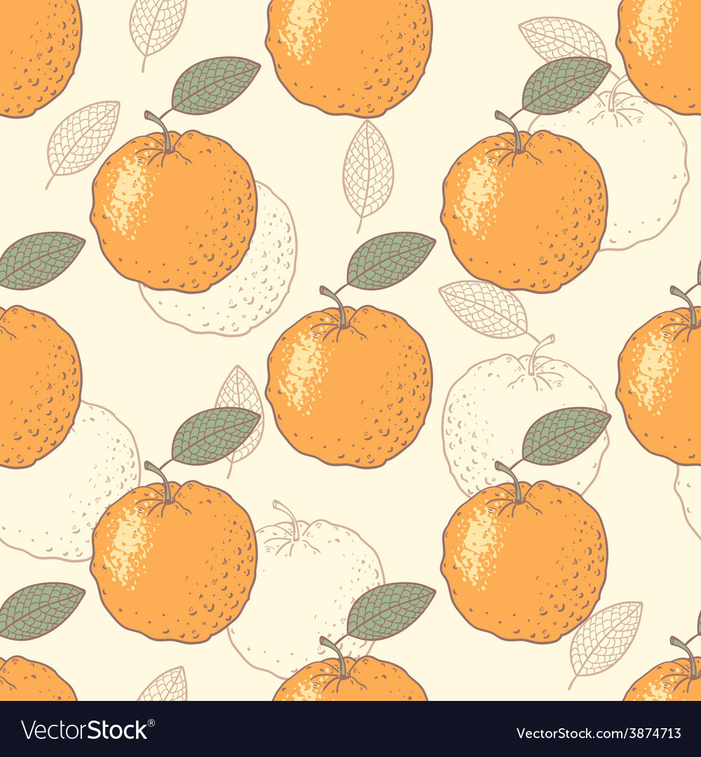 Oranges seamless pattern vector image
