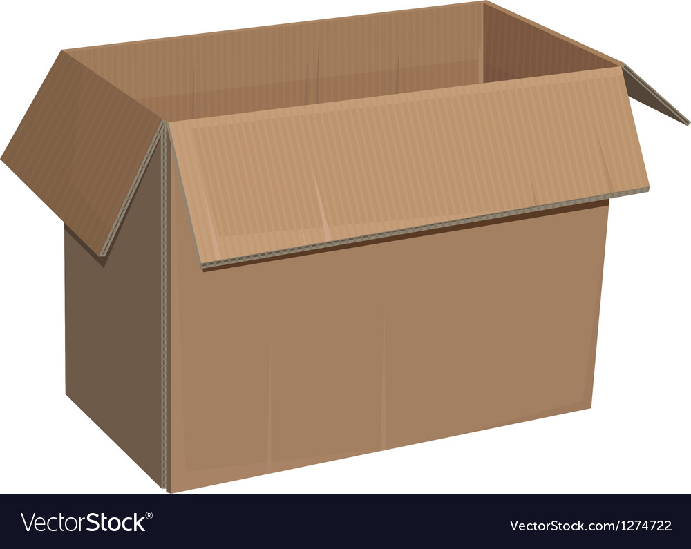 Open cardboard box isolated vector image