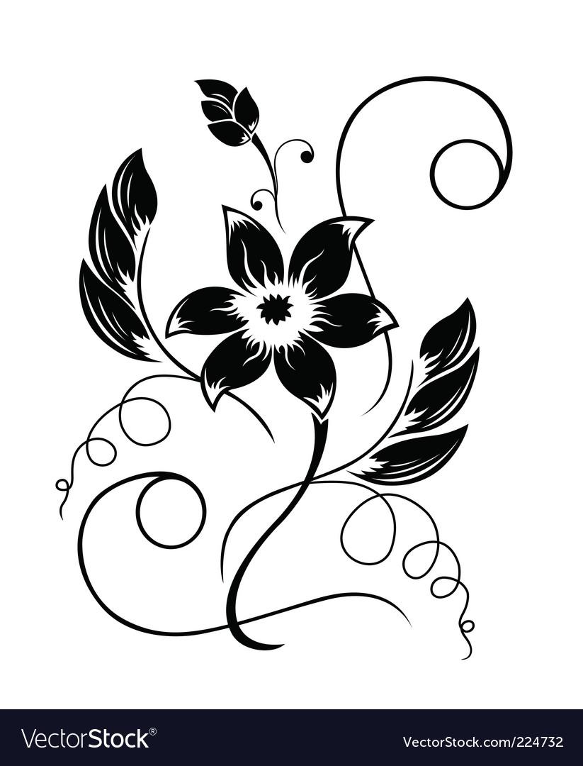 Flower black a white pattern vector image