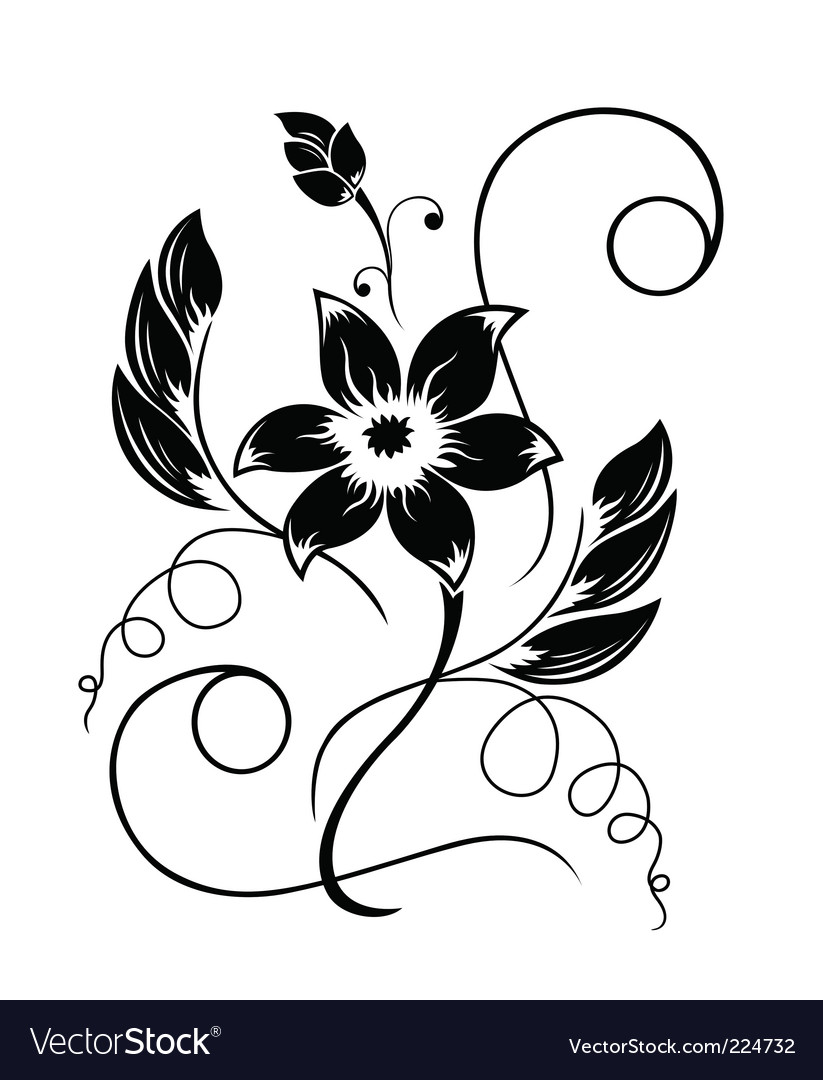 Flower black a white pattern vector image