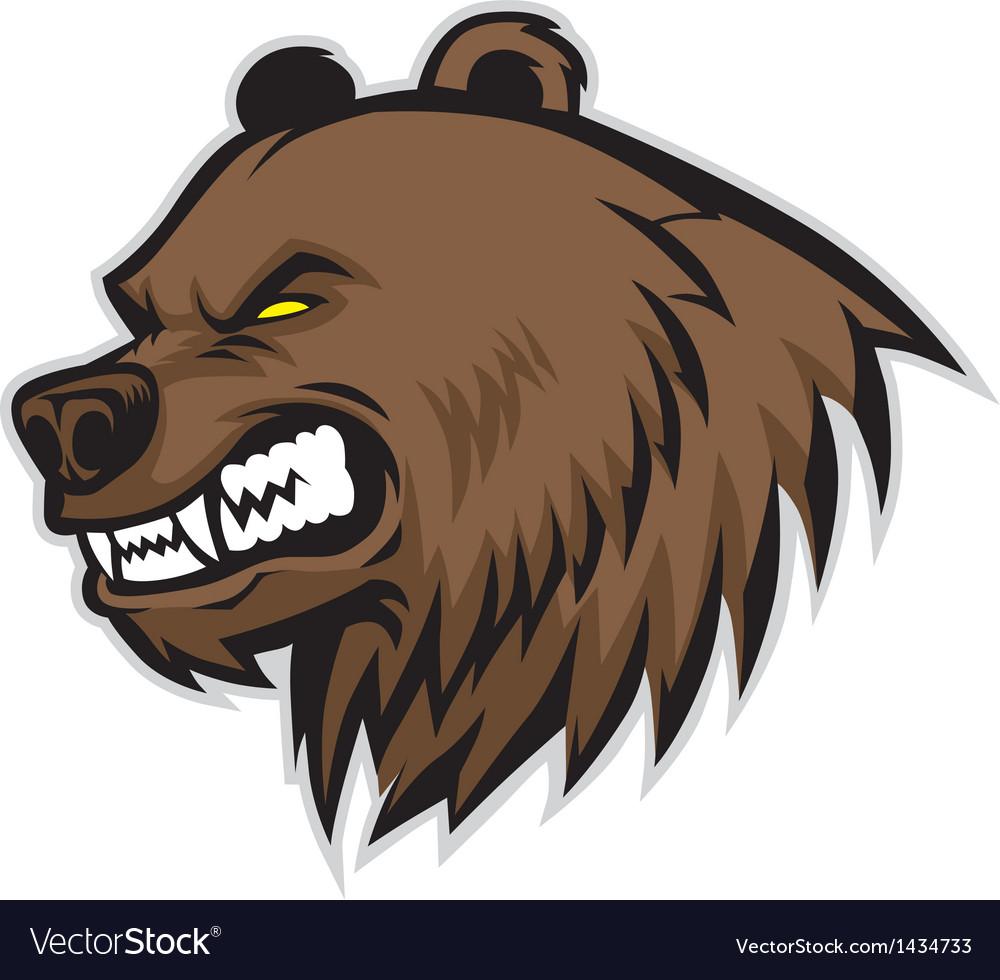 Bear Body Build