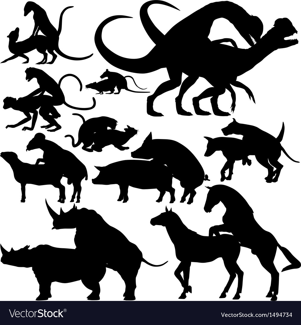 Animals mating vector image